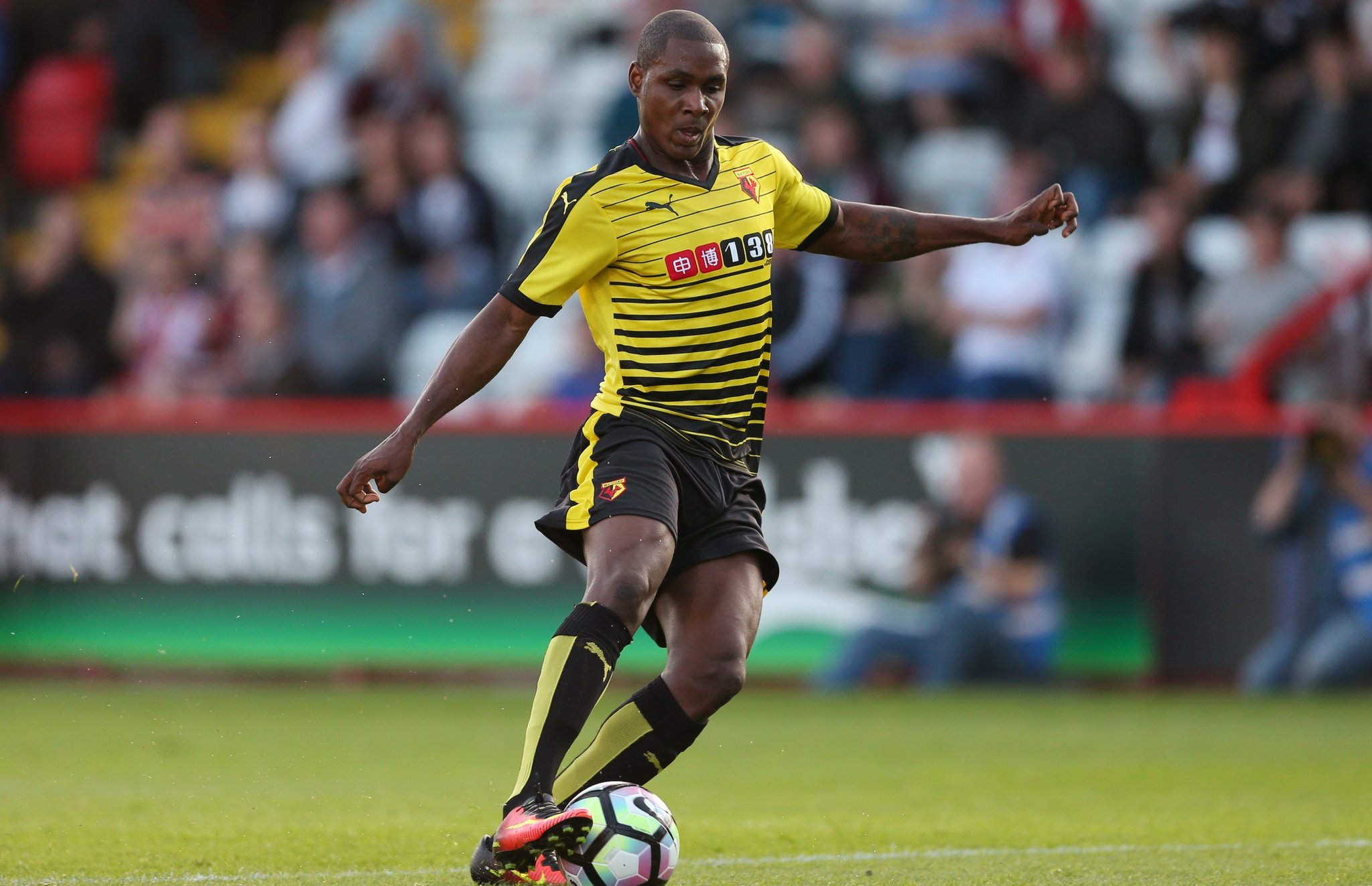 Success Makes Watford Debut In Pre-Season Win, Ighalo Unlucky
