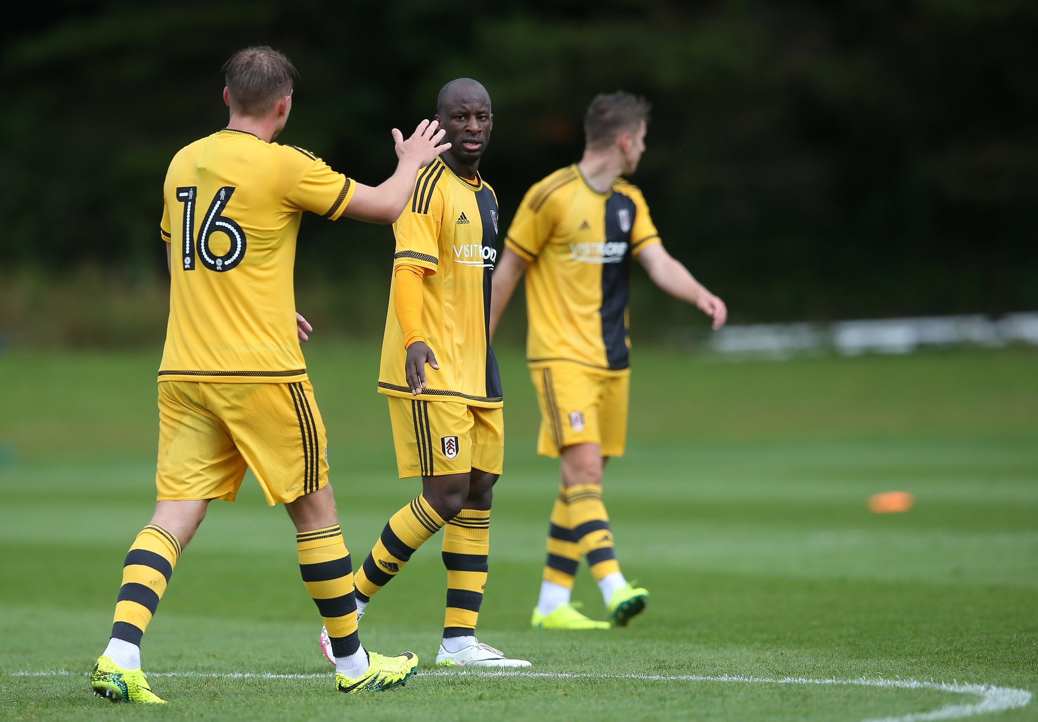 Aluko's Fulham Round Off Pre-season Against Crystal Palace