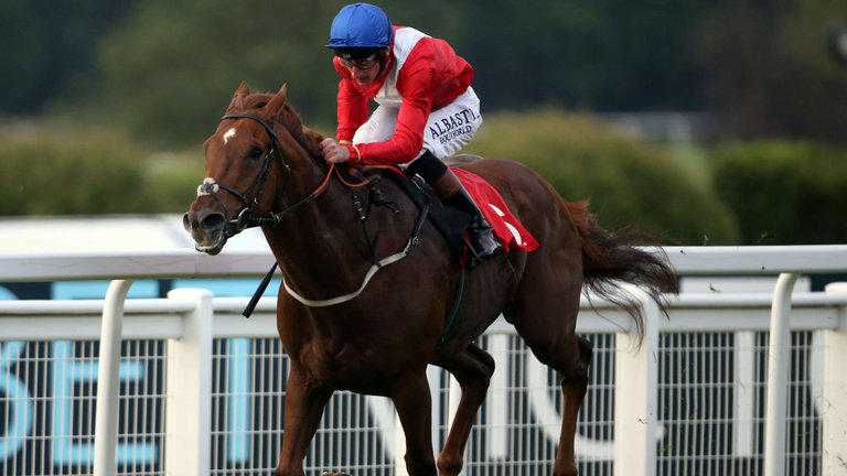 Big Thing predicted For Zonderland At Goodwood