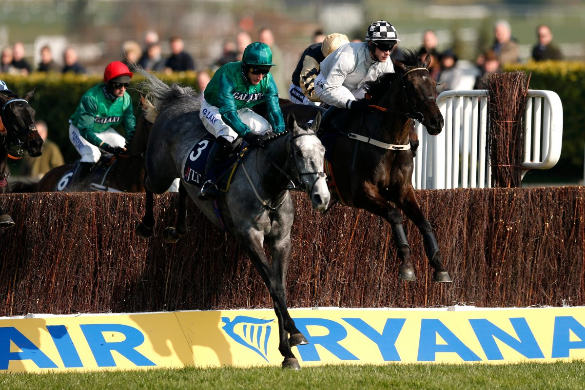 Bristol De Mai Defends Betfair Chase Title
